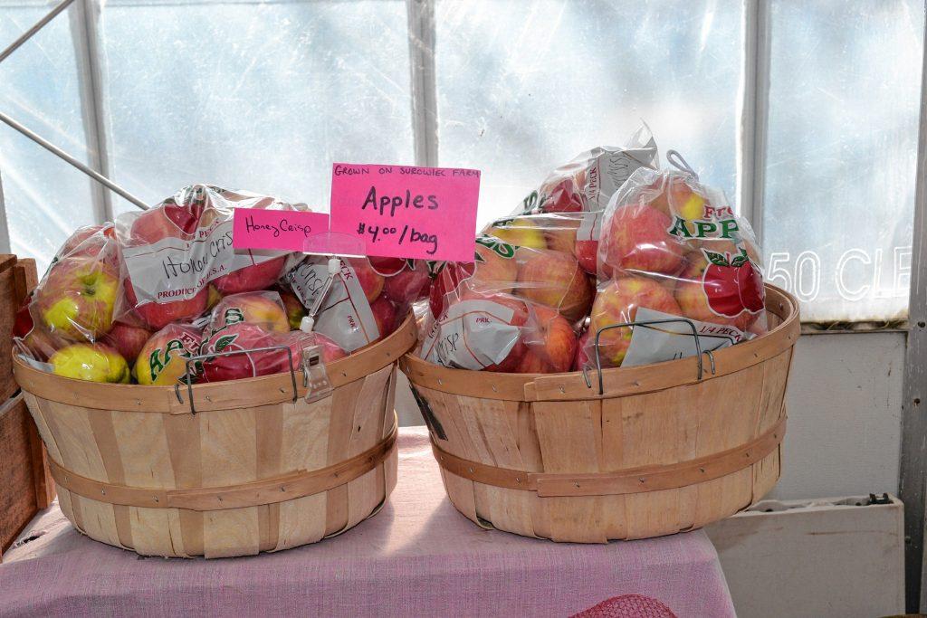 Apples from Surowiec Farm. TIM GOODWIN / Insider staff