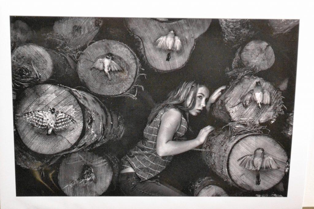 Untitled, Julie Hamel. TIM GOODWIN / Insider staff
