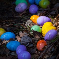 Easter events and activities