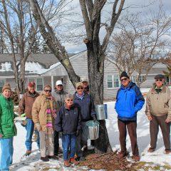 Havenwood Bucket Brigade is collecting sap