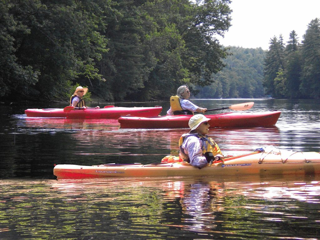 Among the vast offerings provided by OLLI are fun outdoor outings, such as kayak trips.  Courtesy of OLLI