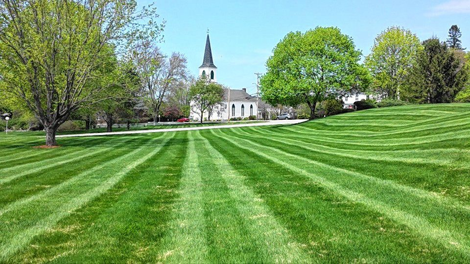 Thomson Lawn Care & Irrigation can get your lawn looking immaculate, like this. Courtesy of Thomson Lawn Care & Irrigation