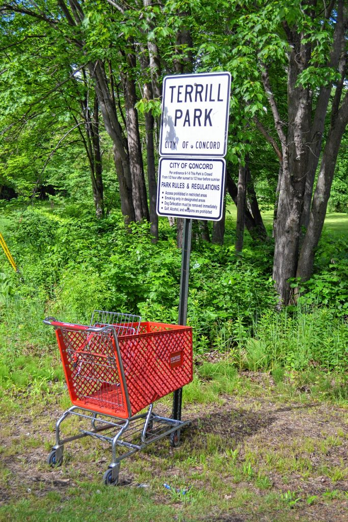 We found a Staples shopping cart all the way over at Terrill Park. TIM GOODWIN / Insider staff