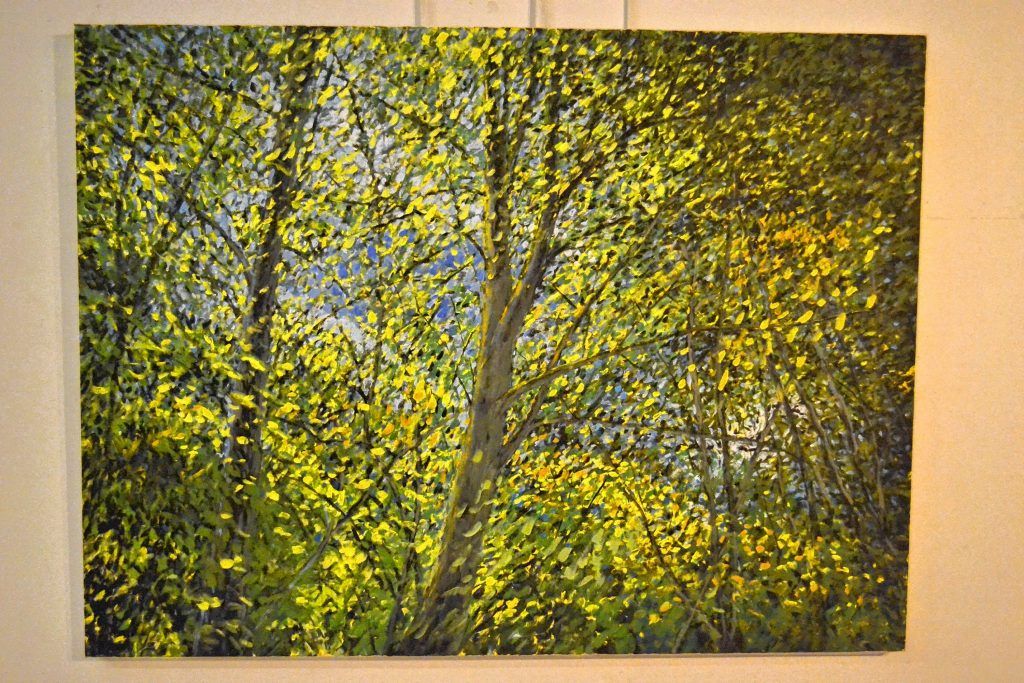 Landscape artist Jim Murphy has a collection of his work on display at the Forest Society through June. TIM GOODWIN / Insider staff