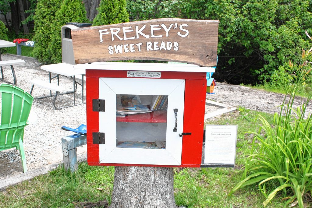 Frekey's Dairy Freeze has its own Little Free Library -- an officially registered one, no less -- right in the parking lot for kids and adults alike to browse through while eating ice cream. JON BODELL / Insider staff