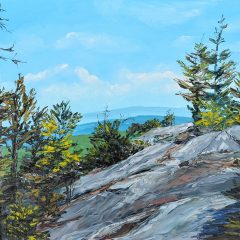On Display: See Alison Vernon's art at the Forest Society