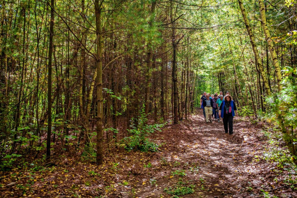 Community members walk along a new public trail following a ribbon cutting ceremony at Smokestack Center in Concord on Oct. 6, 2016. Owners of Smokestack and their tenants, such as GoodLife Programs & Activities, hope the short trail is only the start of a larger vision for the wooded area off the center's parking lot. (ELIZABETH FRANTZ / Monitor staff) ELIZABETH FRANTZ
