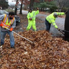 Concord has made a change to its leaf-collection program, and you'll probably like it