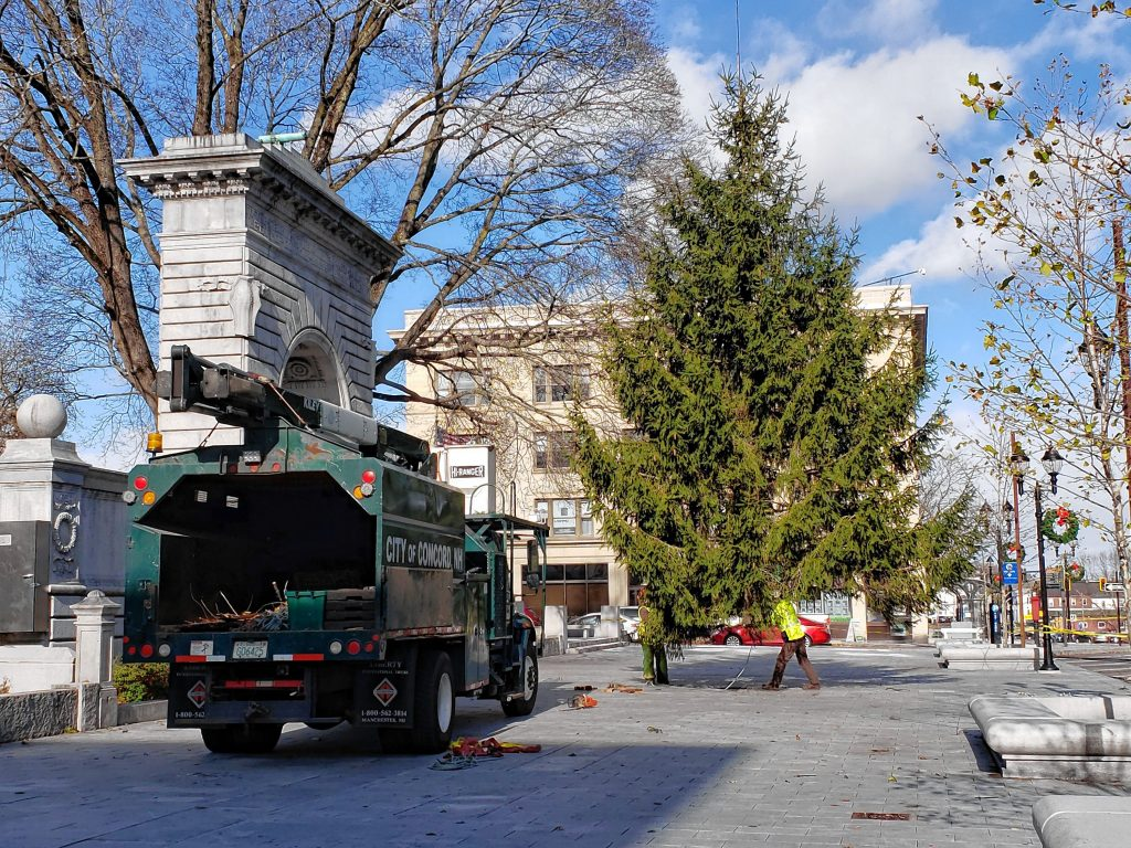 City crews installed a 35 foot Norway Spruce tree outside the State House on Wednesday. This year's tree came from Blossom Hill Cemetary, the same place as last year's tree.  Courtesy