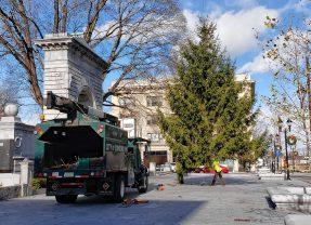 Christmas tree lighting ceremony to kick off holiday season in Concord