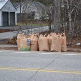 City Manager's Newsletter: Bagged leaf collection begins, road work continues and more