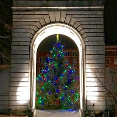 Look beyond Concord's Christmas tree and think back to 1892