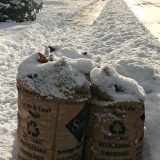 City Manager's Newsletter: Winter reminders, Parks and Rec updates and more