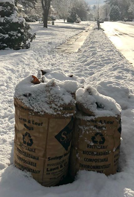 Did you get your leaf bags out in time?