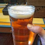 Tasty Brews: Elysian Space Dust IPA from Area 23