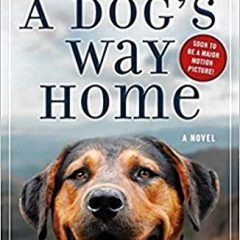 Book of the Week: 'A Dog's Way Home'