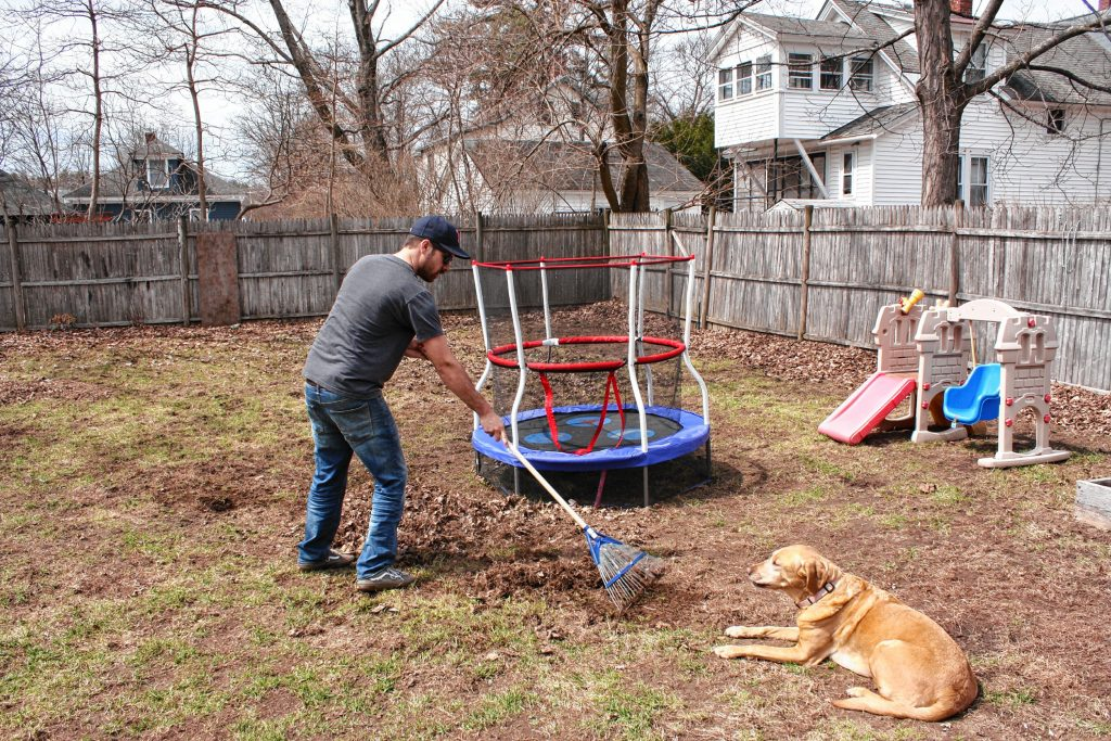 Here I am raking up all the leaves I left behind in the fall. As you can see, the dog was not at all concerned with offering any help.  AIMEE BODELL / For the Insider