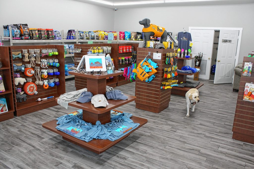For the Love of Dogs Everywhere in Chichester caters to all your dog needs, selling food, treats, toys, beds, outerwear and anything else your furry friend desires.  JON BODELL / Insider staff