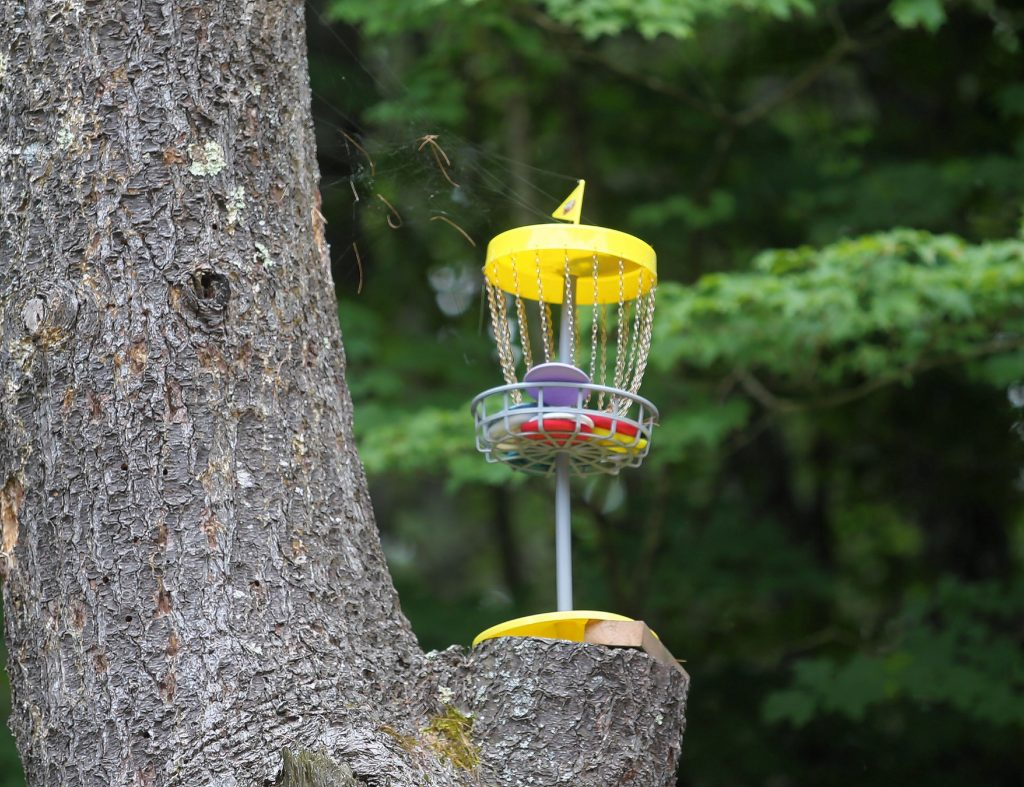 A smaller chain basket sits atop a tree at Top O' The Hill Disc Golf Course in Canterbury.