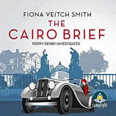 Book of the Week: 'The Cairo Brief'