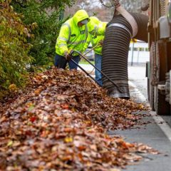 City Manager's Newsletter: Fall leaf collection, election reminders and more