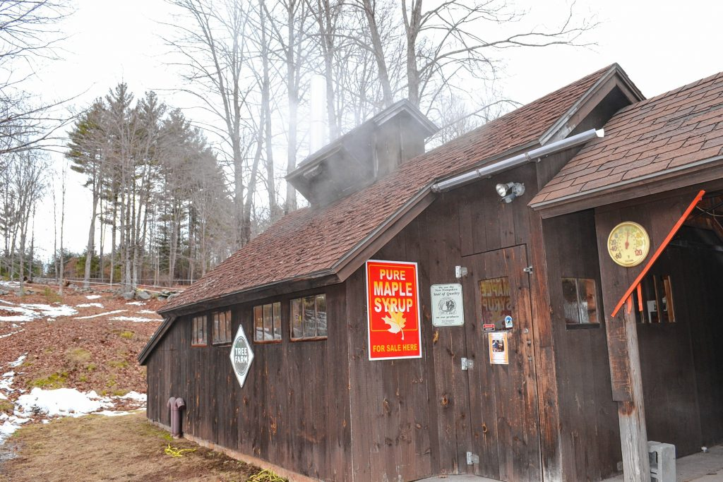Since Mother Nature didn't exactly cooperate with our idea for a maple syrup issue, we stopped by Mapletree Farm last week to actually see the sweet stuff being made.