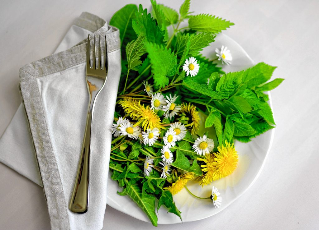 Dandelions for instance, are rich in Vitamin D as are pumpkin flowers.