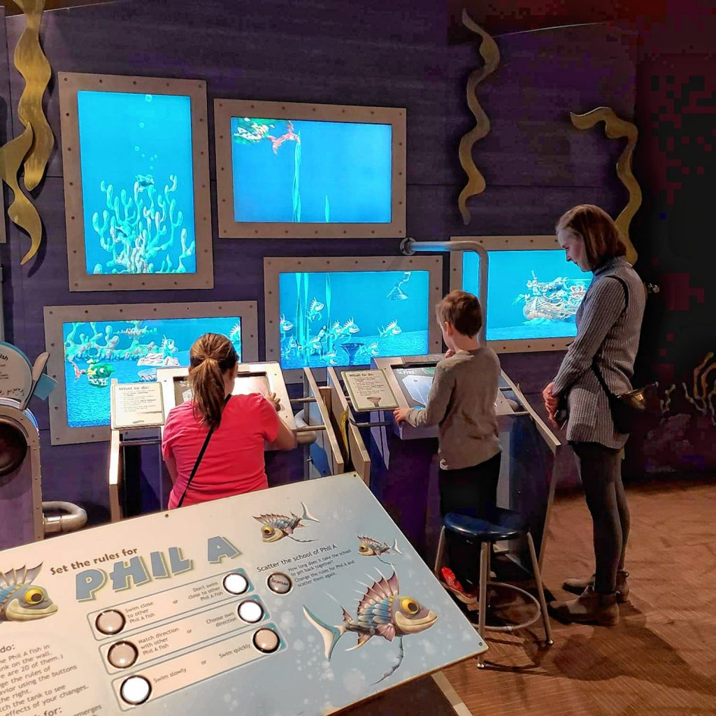Families use the Virtual Fish Tank at the McAuliffe-Shepard Discovery Center.