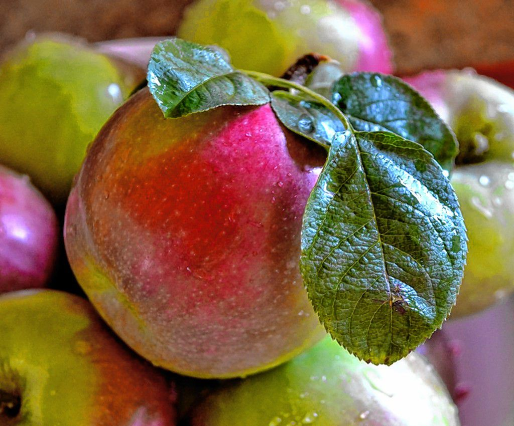 Simple, homemade apple crisp SARAH PEARSON