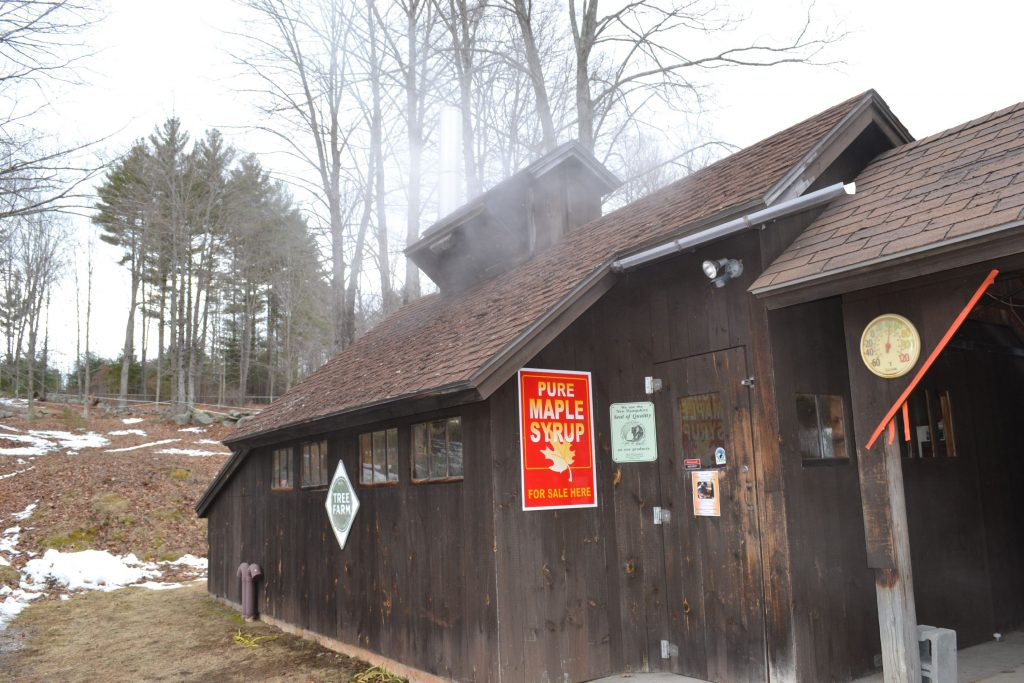 Since Mother Nature didn't exactly cooperate with our idea for a maple syrup issue, we stopped by Mapletree Farm last week to actually see the sweet stuff being made. Tim Goodwin