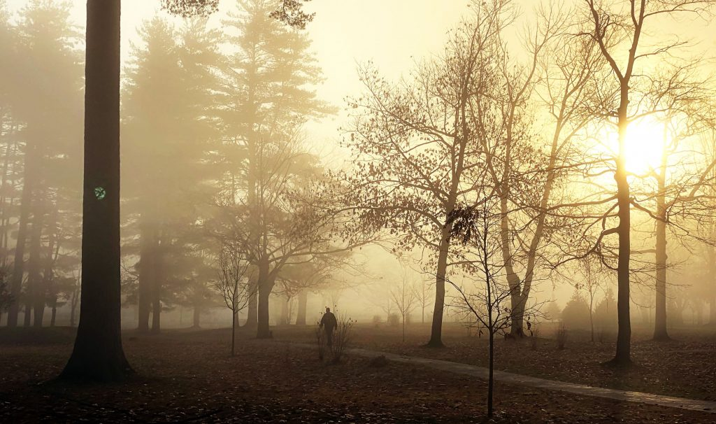A dog walker strolls through Rollins Park in the morning fog on Wednesday morning, November 11, 2020.