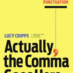 Book: Actually, the Comma Goes Here: A Practical Guide to Punctuation