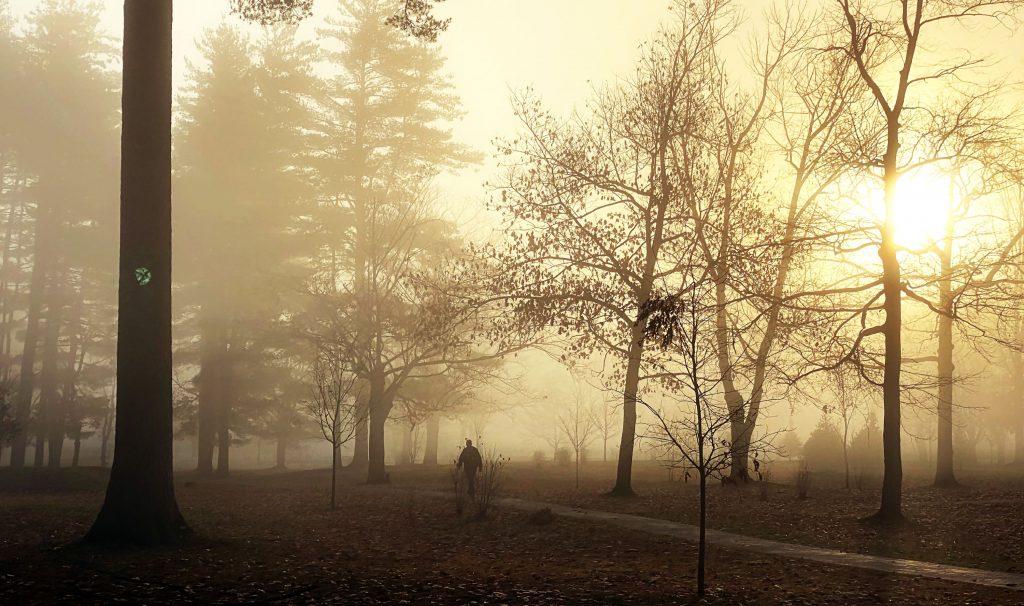 A dog walker strolls through Rollins Park in the morning fog on Wednesday morning, November 11, 2020.