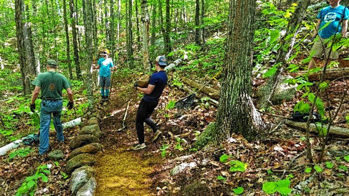 Thank you to the NEMBA (New England Mountain Bike Association) trail volunteers who were at Knowlton Forest last weekend clearing the new trail scheduled to open later this month.