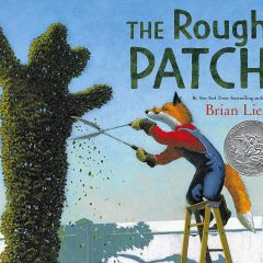 Book: The Rough Patch